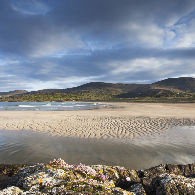 """""""The Beach At Derrynane Near Caherdaniel On The Ring Of Kerry, Southwest..."""" stock image"""