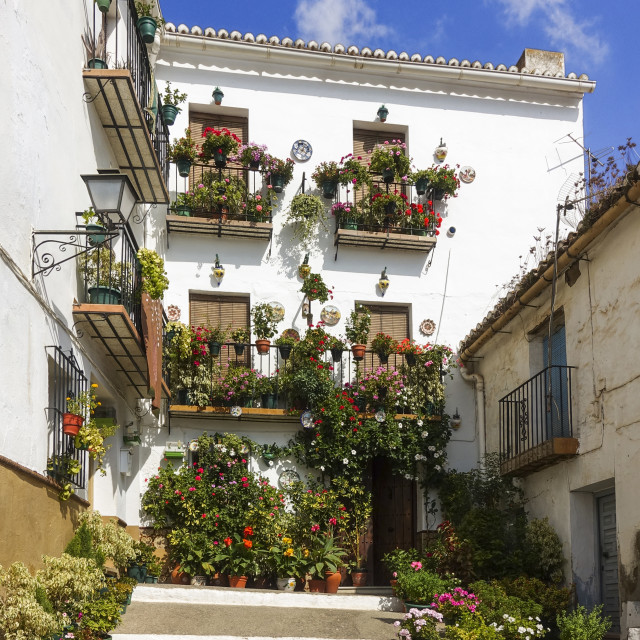 """Mediterranean Patio with balconies and flowers"" stock image"