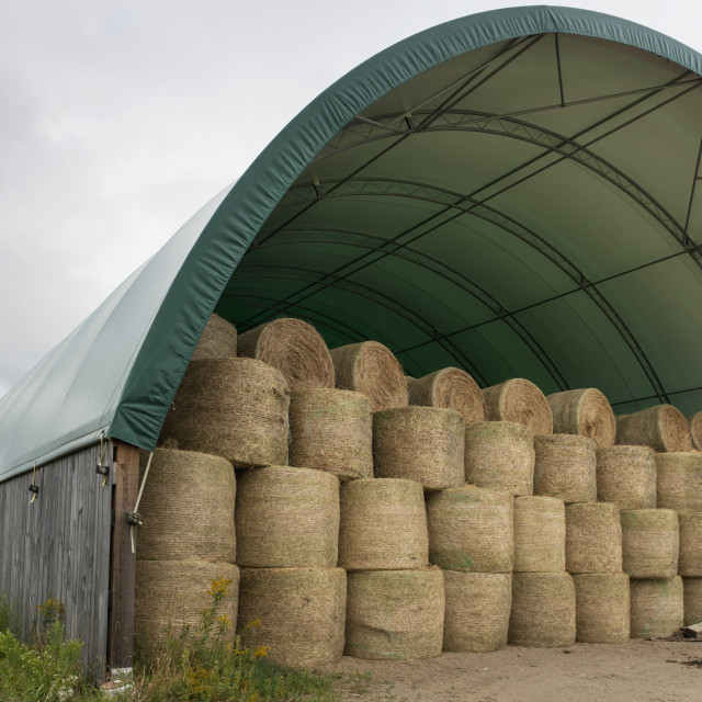 """Hale Bales Stored In A Covered Structure; Montebello, Quebec, Canada"" stock image"