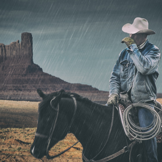 """Old Cowhand"" stock image"