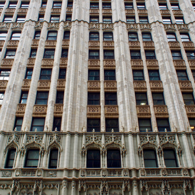 """""""Woolworth Building, New York"""" stock image"""