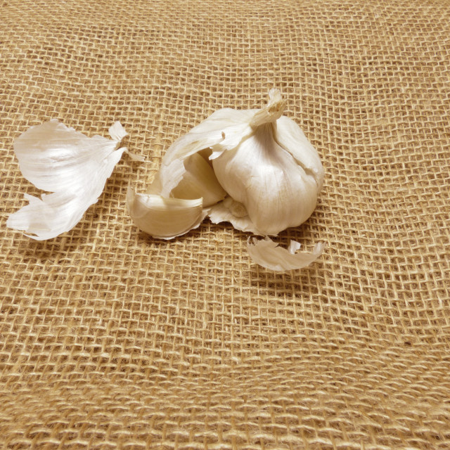 """""""Garlic open on jute and individually."""" stock image"""