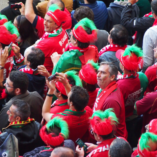 """Portugal fans dressed up"" stock image"
