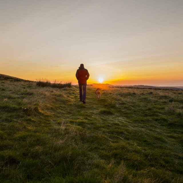 """Man and dog sunrise"" stock image"