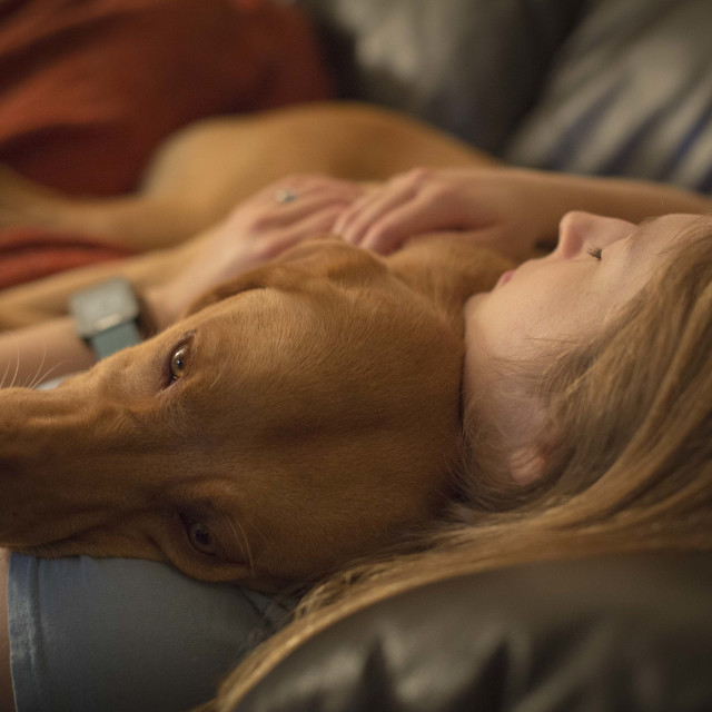 """Dog owner cuddle"" stock image"
