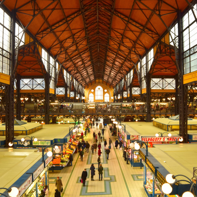 """Budapest Great Market Hall"" stock image"