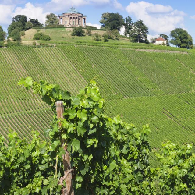 """Wurttemberg Mausoleum in the vineyards, Stuttgart Rotenberg, Baden..."" stock image"