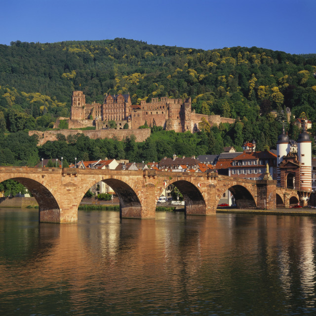 """Heidelberg Castle, Alte Brucke and the River Neckar, Heidelberg, Baden..."" stock image"