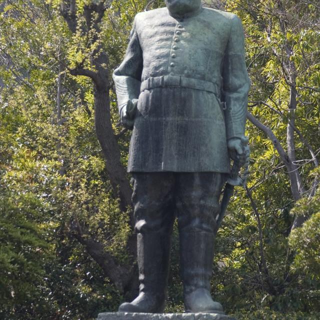 """""""Saigo Takamori statue, Kagoshima, Kyushu, Japan, Asia"""" stock image"""