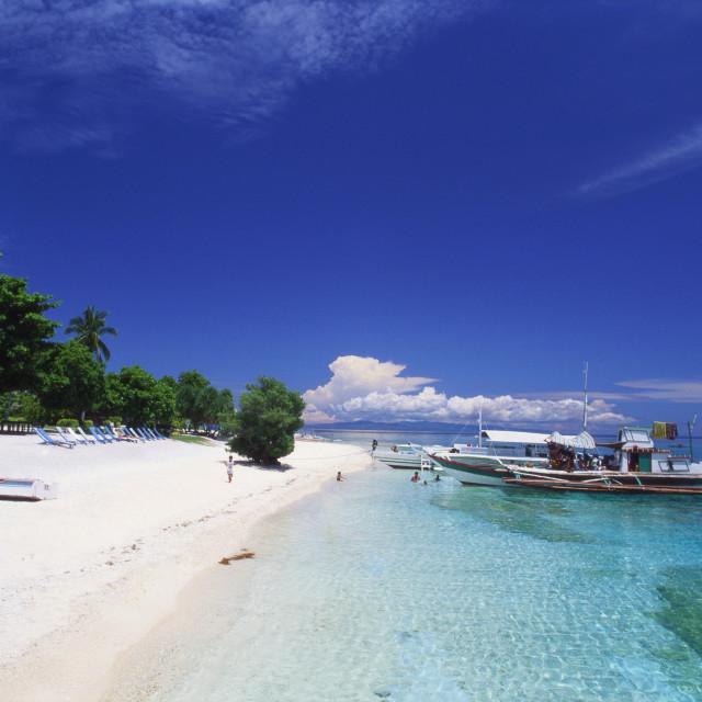 """Outrigger Boat Moored at Balicasag, Bohol, Philippines"" stock image"