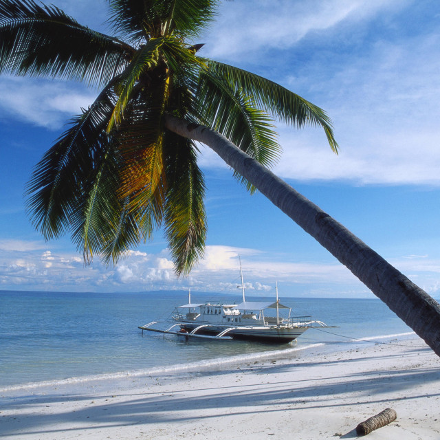 """""""Outrigger Motorboat Moored on Alona Beach, Panglao, Bohol, Philippines"""" stock image"""