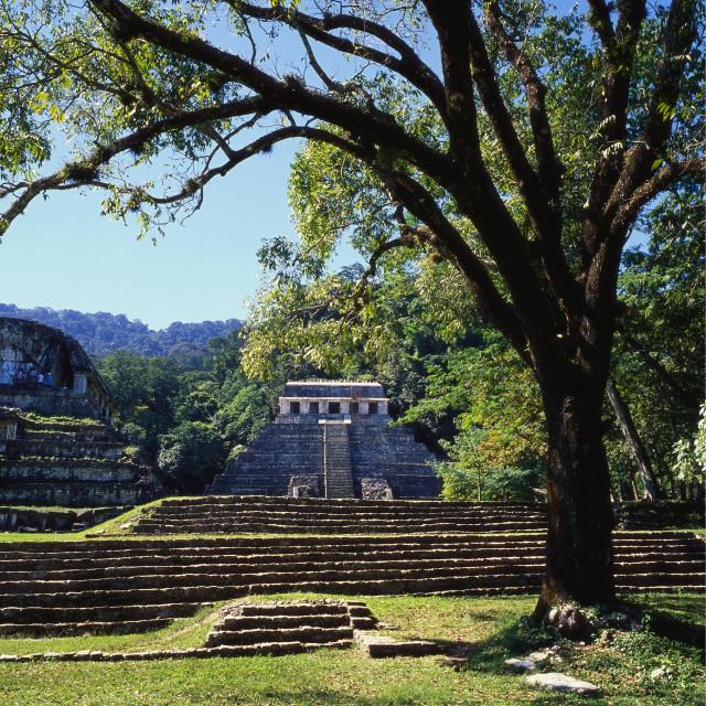 """Ancient Mayan Temple, Palenque, Chiapas, Mexico"" stock image"