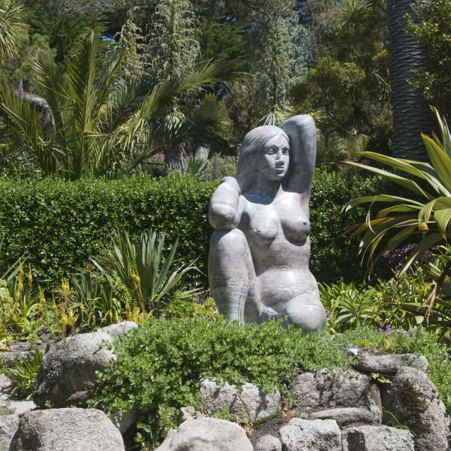 """Abbey Gardens, Tresco, Isles of Scilly, Cornwall, United Kingdom, Europe"" stock image"