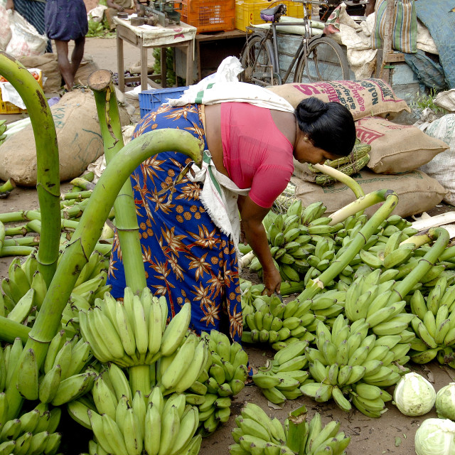 """Vegetable market, Chalai, Trivandrum, Kerala, India, Asia"" stock image"