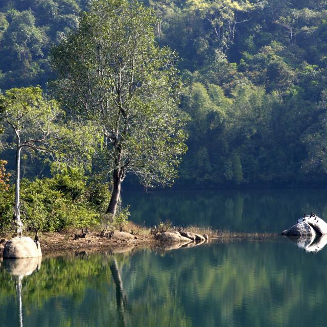 """Steve Irwin Crocodile Park, Trivandrum, Kerala, India, Asia"" stock image"
