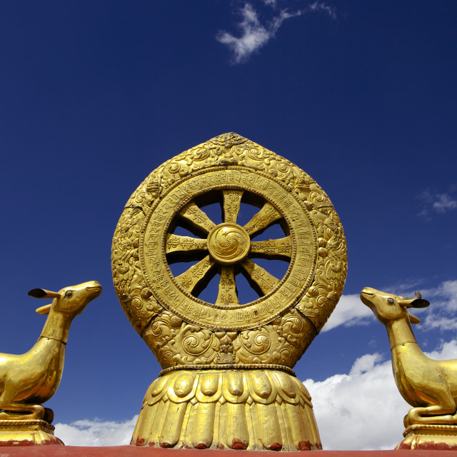 """A golden dharma wheel and deer sculptures on the sacred Jokhang Temple roof,..."" stock image"