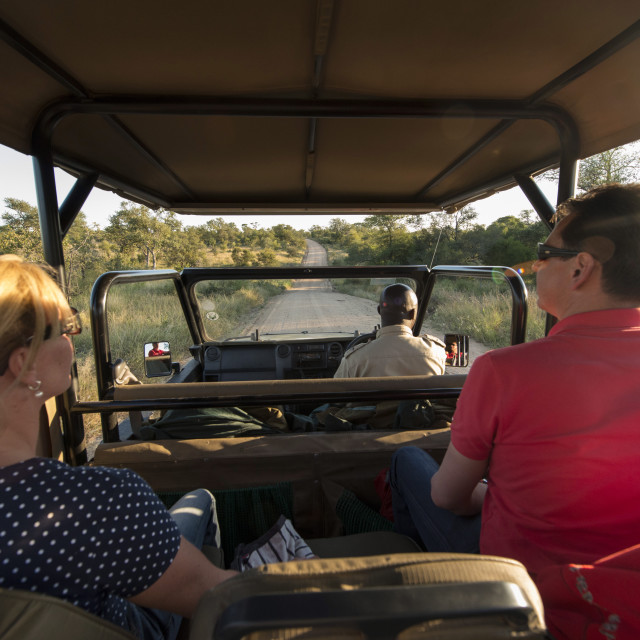 """Game drive, Kruger National Park, South Africa, Africa"" stock image"