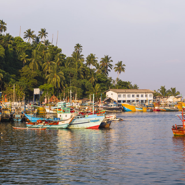 """Old commercial fishing boats in Mirissa Harbour, South Coast of Sri Lanka, Asia"" stock image"
