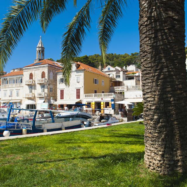 """Hvar town centre, church spire, Hvar Island, Dalmatian Coast, Croatia, Europe"" stock image"