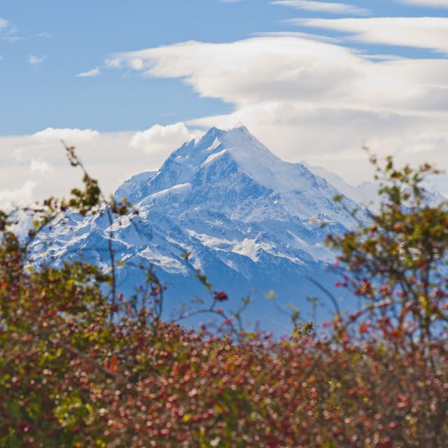 """Mount Cook summit, at 3754 metre the highest mountain in New Zealand, Aoraki..."" stock image"