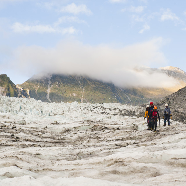 """Tourists on an ice climbing trip, Fox Glacier, Westland National Park, UNESCO..."" stock image"