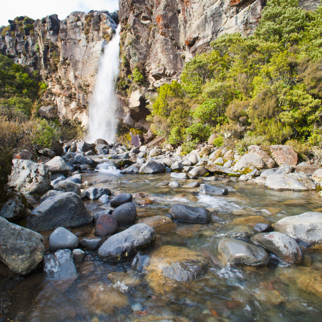 """Taranaki Falls, River Valley, Tongariro National Park, UNESCO World Heritage..."" stock image"