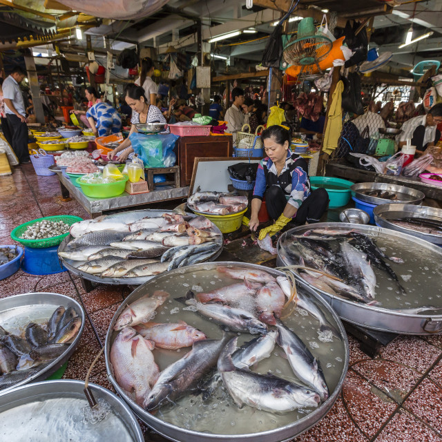 """""""Fresh seafood for sale at market at Chau Doc, Mekong River Delta, Vietnam,..."""" stock image"""