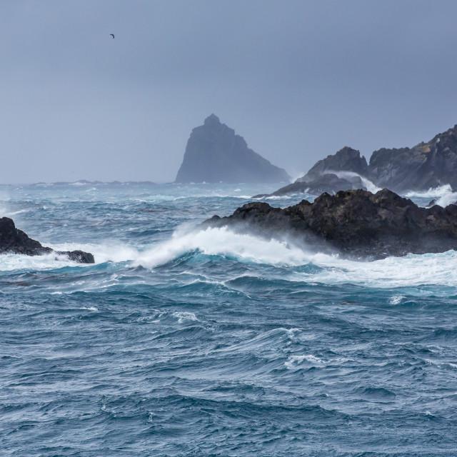 """Elsehul Bay, South Georgia, South Atlantic Ocean, Polar Regions"" stock image"
