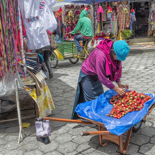 """Street scene, Otavalo market, Imbabura Province, Ecuador, South America"" stock image"