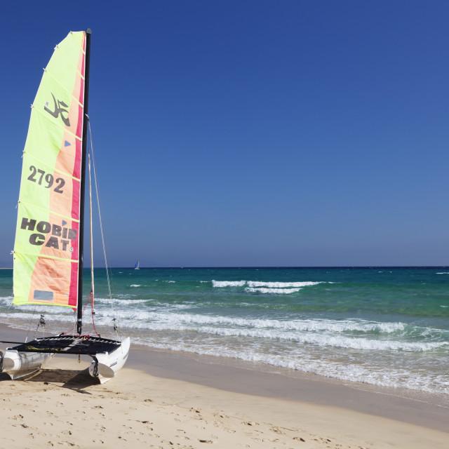 """""""Catamaran at Playa del Sotavento, Risco del Paso, Fuerteventura, Canary..."""" stock image"""