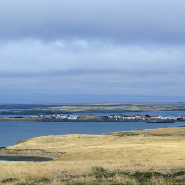 """Goose Green, Falkland Islands"" stock image"