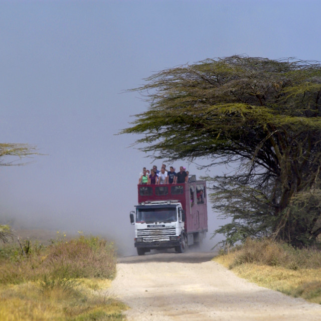 """Tourists in Serengeti,Tanzania"" stock image"
