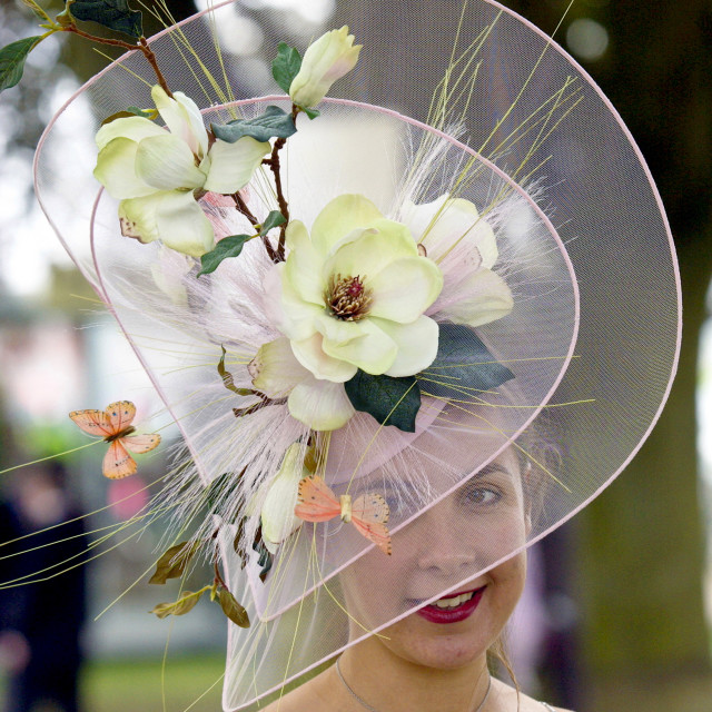 """Race-goer wearing an elaborate hat with flowers and silk butterflies at Royal..."" stock image"