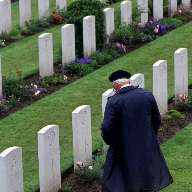 """Veteran in military cap looking at war graves in Commonwealth war cemetery,..."" stock image"