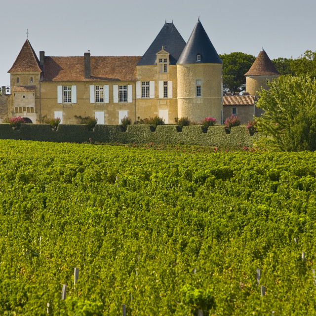 """""""Chateau d'Yquem, Sauternes, France constructed in 15th century with later..."""" stock image"""