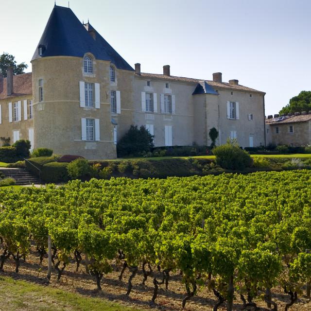"""""""Chateau d'Yquem, Sauternes, France."""" stock image"""