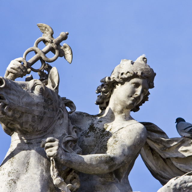 """""""Pigeon rests on horse and rider statue in Place de la Concorde, Paris, France"""" stock image"""