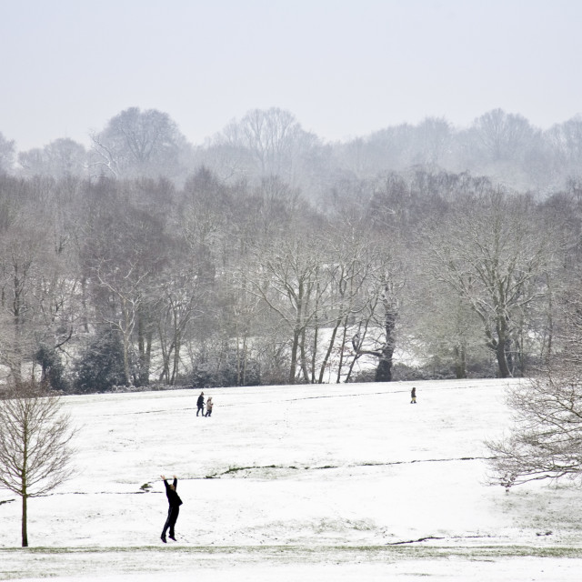 """""""Man exercises in snow-covered Hampstead Heath, North London, England, United..."""" stock image"""