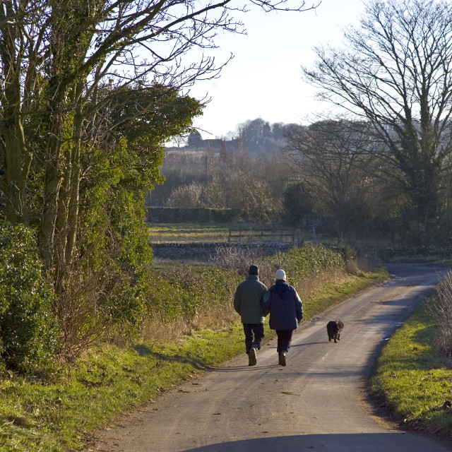 """""""Couple walk their dog on a country lane in Asthall Leigh, Oxfordshire, United..."""" stock image"""