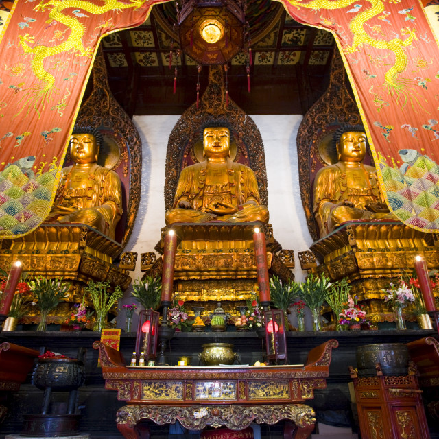 """""""Golden Buddhas in the Grand Hall of Magnificence of the Jade Buddha Temple,..."""" stock image"""