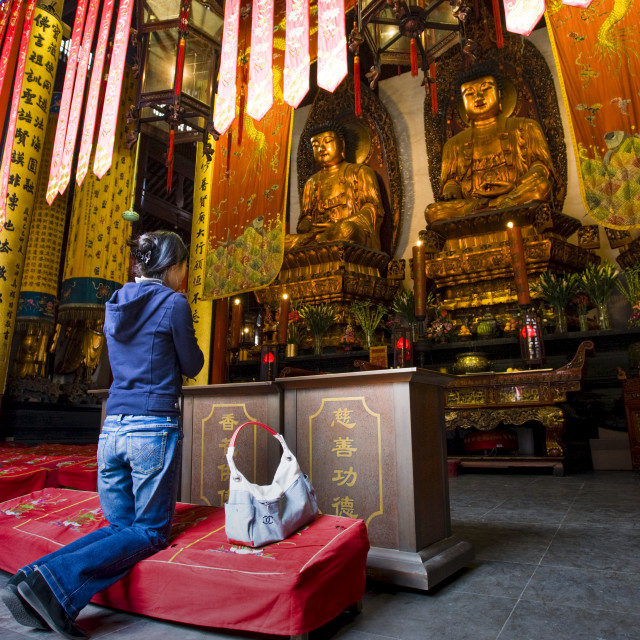 """""""Woman prays to Golden Buddhas in the Grand Hall of Magnificence of the Jade..."""" stock image"""