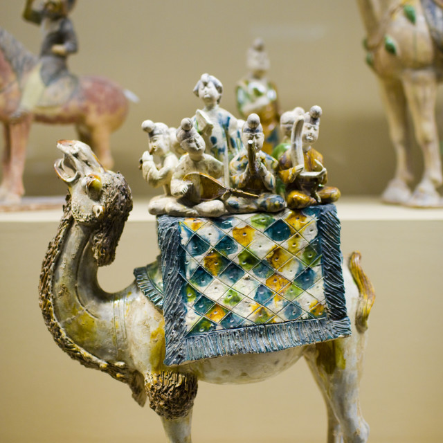 """Camel figure on display in the Shaanxi History Museum, Xian, China"" stock image"