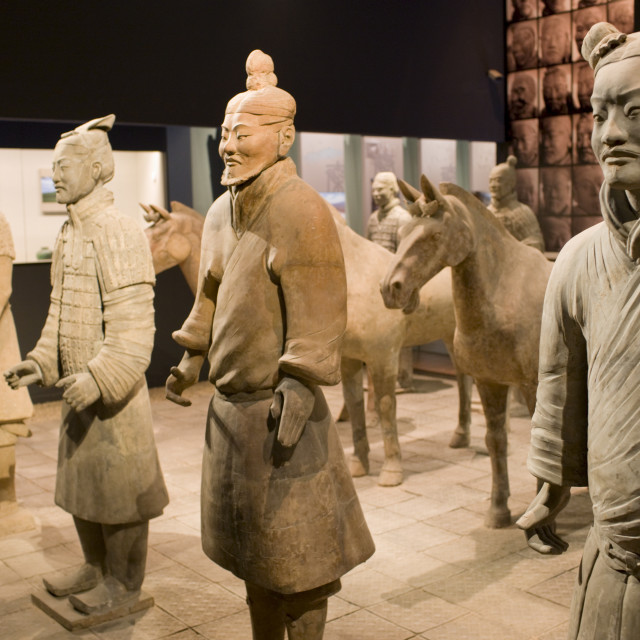 """Terracotta warriors and horses on display in the Shaanxi History Museum,..."" stock image"