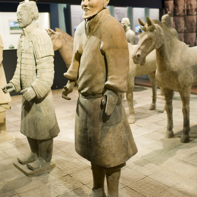 """Terracotta warriors & horses on display in the Shaanxi History Museum, Xian,..."" stock image"