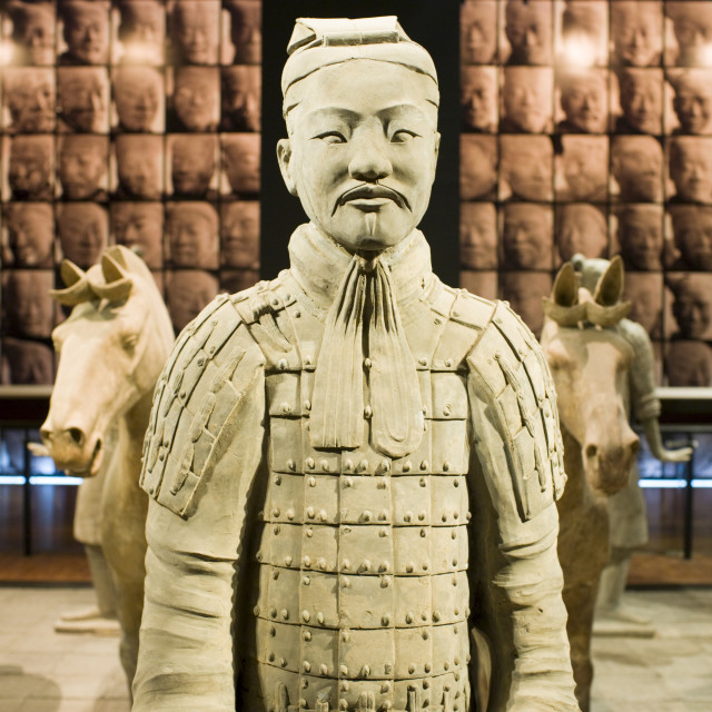 """Terracotta warrior & horses on display in the Shaanxi History Museum, Xian,..."" stock image"