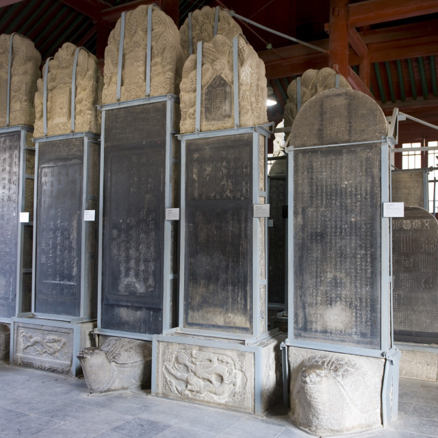 """Forest of Stone Tablets, also known as the Forest of Stelae, Xian, China"" stock image"