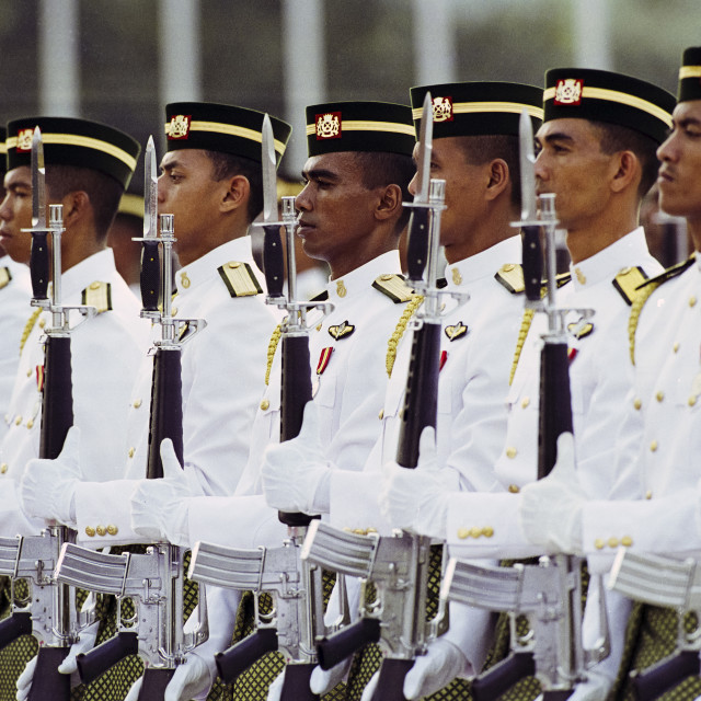 """Ceremonial guard at military display at the Sultan's Palace in Brunei Darussalam"" stock image"