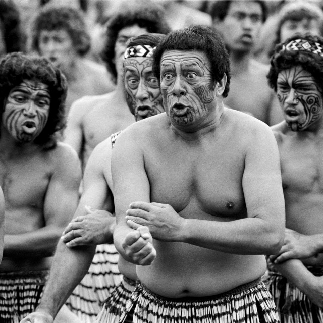 """""""Traditional maori ceremony and war dance, New Zealand"""" stock image"""