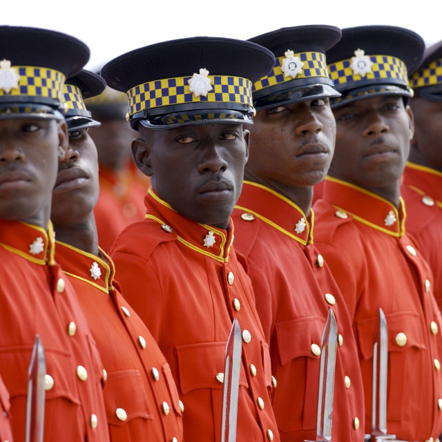 """Military Guard Of Honour of Jamaica Defence Force with bayonets outside..."" stock image"