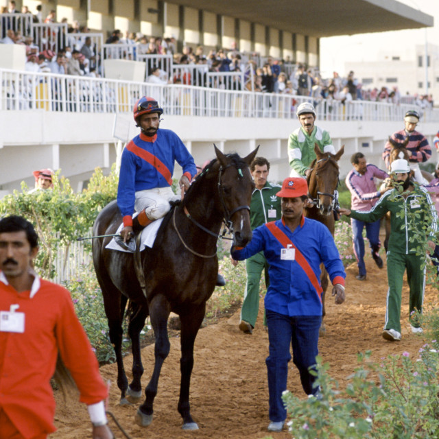 """Horseracing in Riyadh, Saudi Arabia"" stock image"